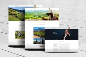 screenshots-webdesign-website-swisskus